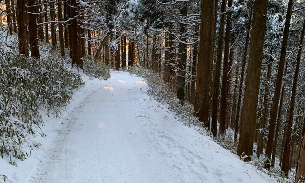 金剛山の雪の山道